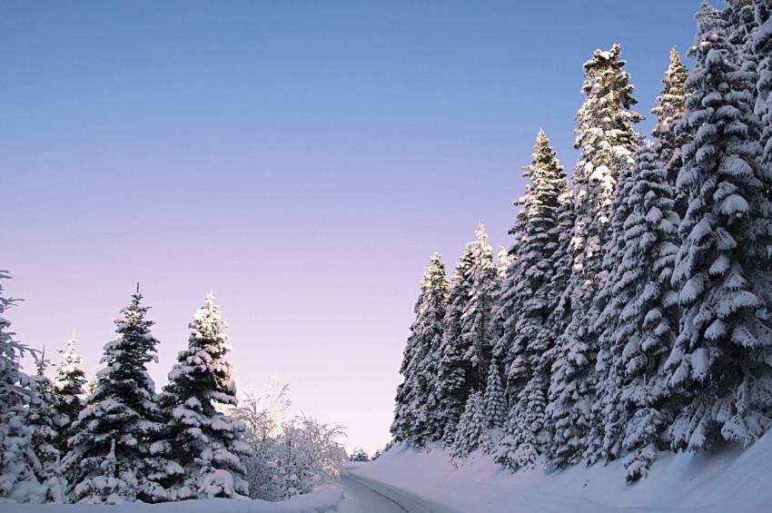 Kartalkayaya sezonun ilk karı yağdı