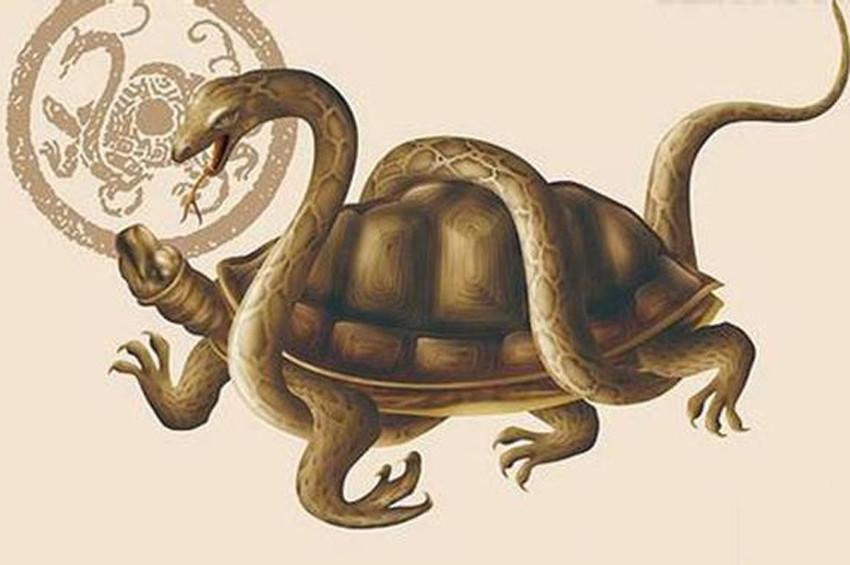 Dünya ve Çin Mitolojisinde Kaplumbağa