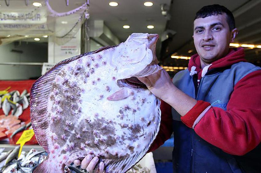 Kalkan balığının kilosu 125 lira oldu