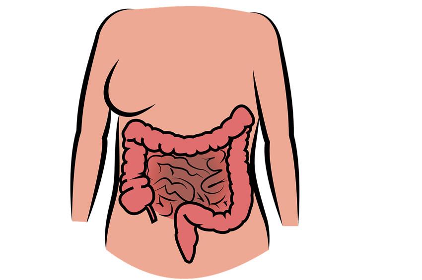 Bağırsak sağlığına zararlı 8 etken ve yararlı 5 besin