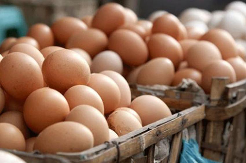 Yumurta yaraları iyileştiriyor