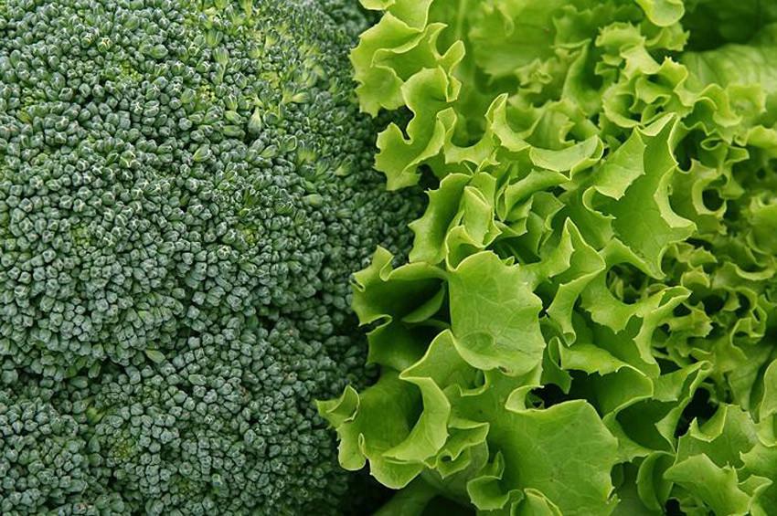 Sarı nokta hastalığının şifası yeşil yapraklı sebzeler