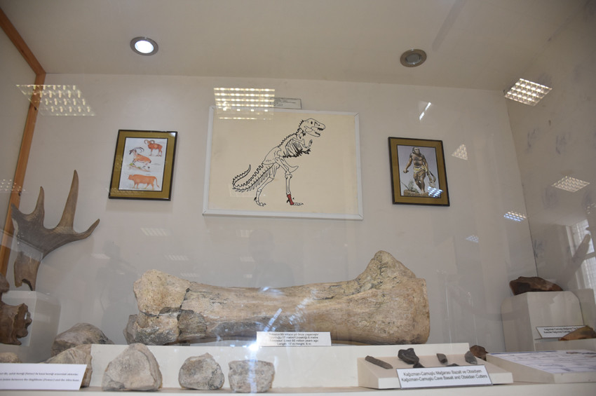 Karsta bulunan dinozor fosili