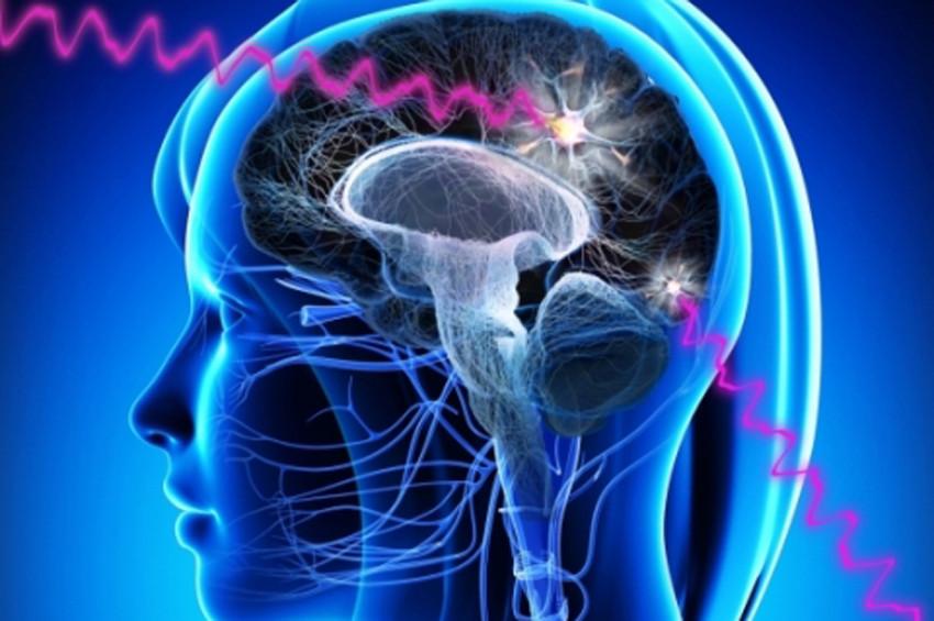Beden ve zihin ilişkisi laboratuvarda aranıyor