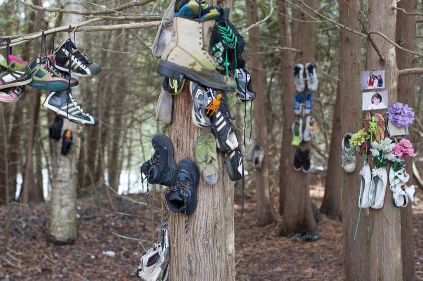 Gizemli ayakkabı ormanı keşfedildi