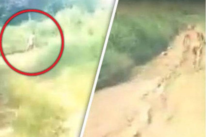 Efsanevi Maymun Adam görüntülendi iddiası