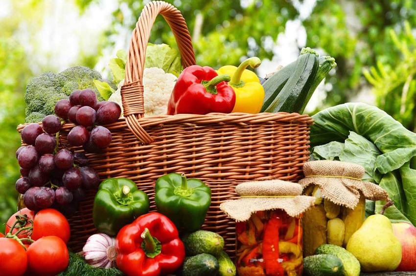 Organik tarım dünyayı beslemeye yeter