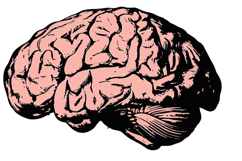 Beyin sağlığı açısından önemli  öneriler