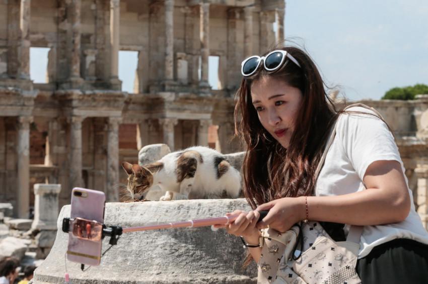 Efesin kedileri