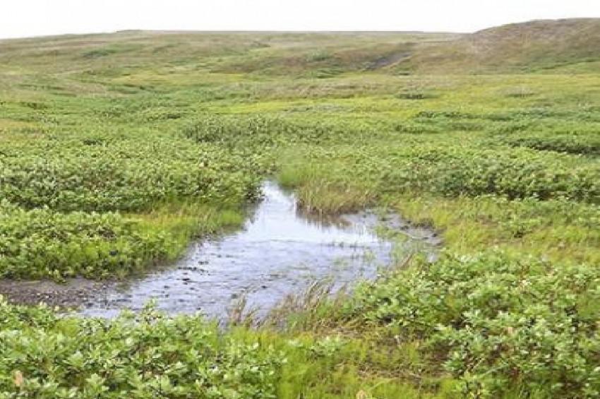 Topraktaki karbondioksitin hapsolma süresi azaldı