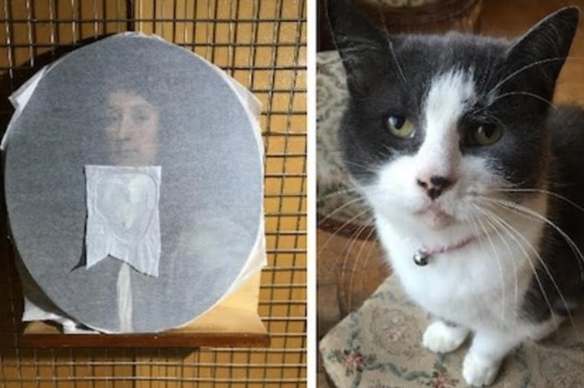 Restoratörün kedisi sanat eserini tırmıkladı