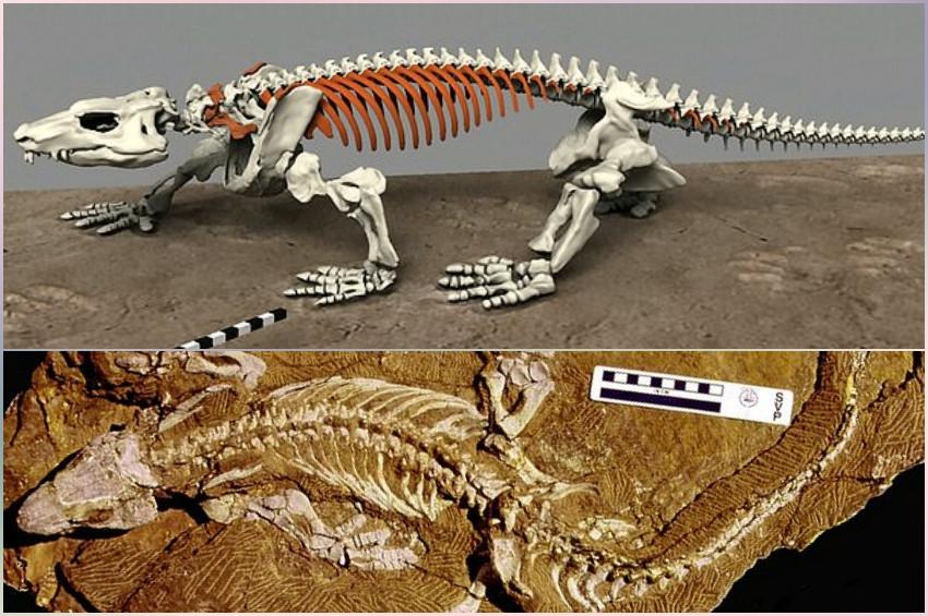 290 Milyon Yıllık Fosil Robot Olarak Dirildi