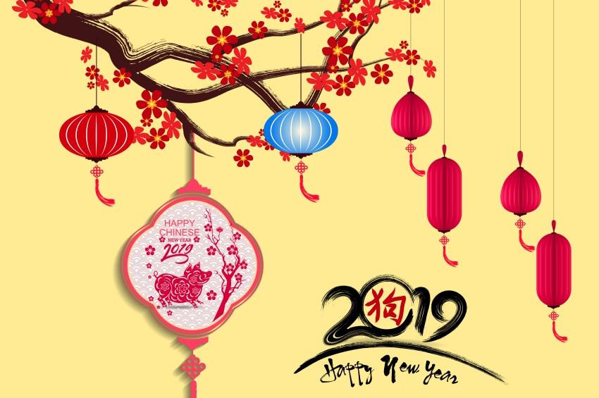 Çin Takvimine göre bu yıl Domuz Yılı