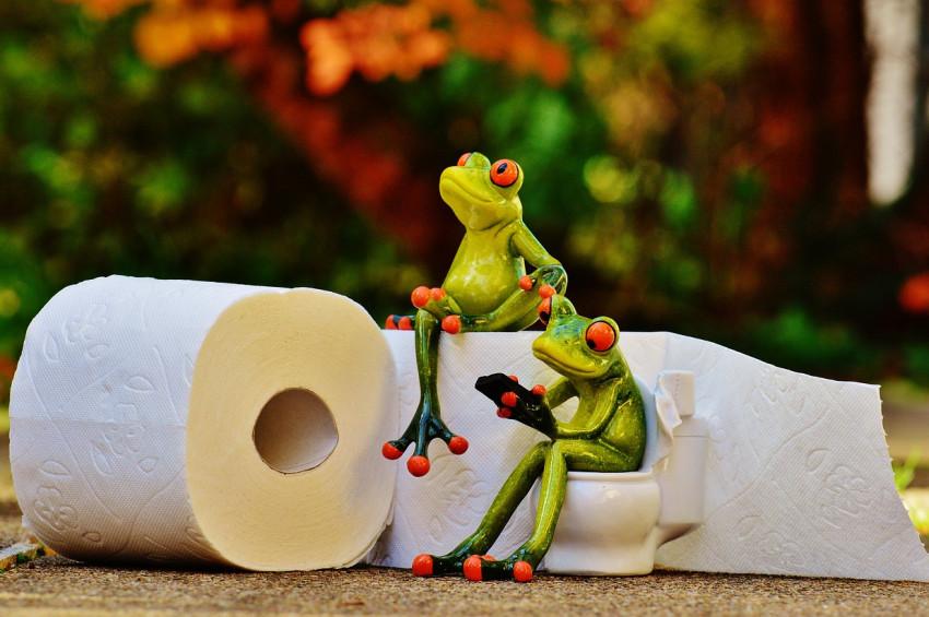 Çevre aşkına  tuvalette kağıt kullanmayın önerisi
