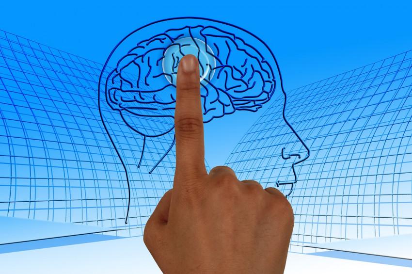 Beyinden bilgi silinebilir mi?