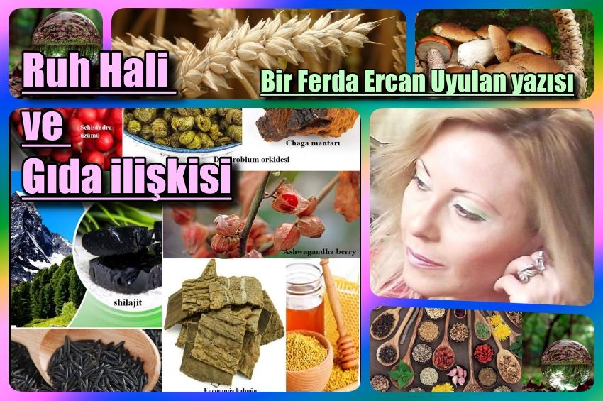 Doğal Yaşam gücünün kaynakları, ruh hali ve gıda ilişkisi