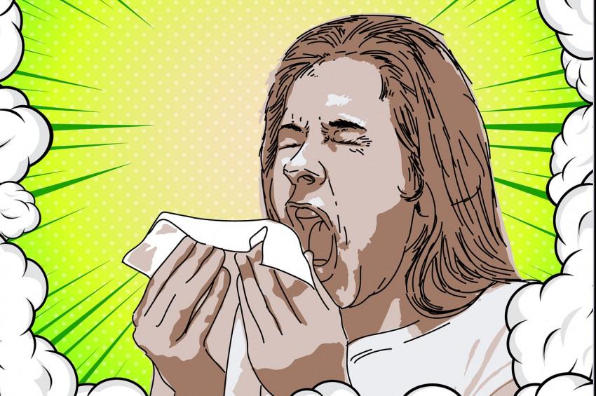 Alerjiye karşı 11 önlem