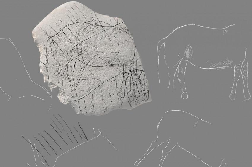Fransa 12 bin yıllık at resimleri bulundu