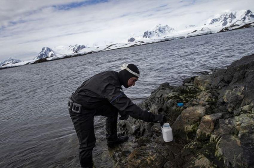Kozmetik kalıntıları Antarktikayı da kirletti