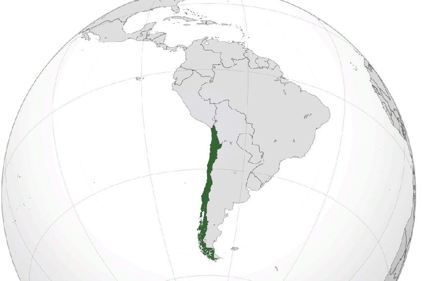 Şilide deprem: Büyüklüğü 6,2