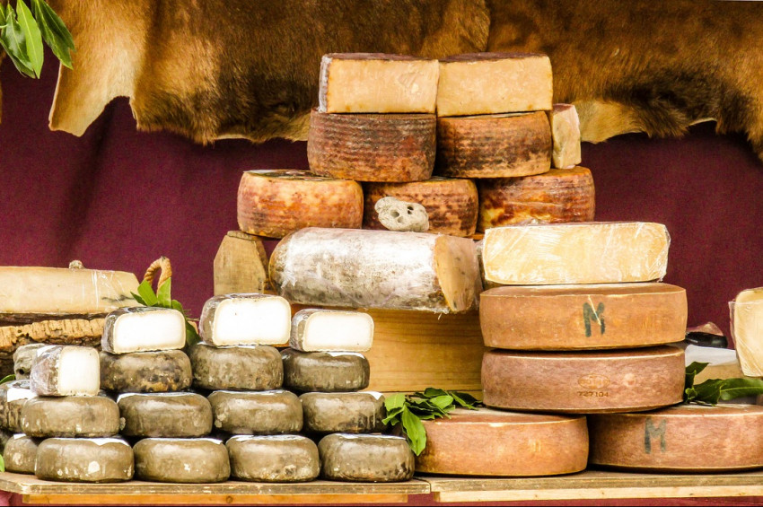 Peynir ağız ve diş sağlığına yararlı