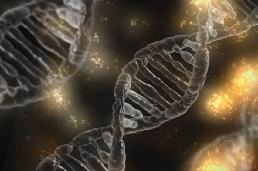 Yaşlanmaya meydan okuyacak gen bulundu iddiası