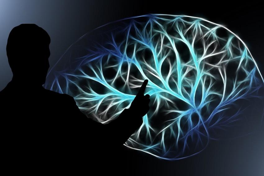 Beyin Sinyallerini Yakalayabilecek Yeni Bir Mikroskop Geliştirildi