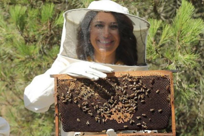 Propolis ve arı sütü ürünlerinin yüzde 90ı sahte