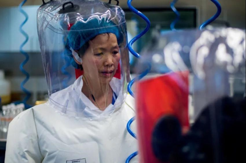 Yarasa Kadından korkutucu koronavirüs açıklaması