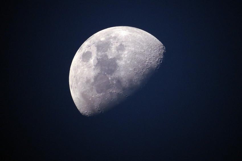Rusyadan NASAya Ayı birlikte keşfedelim teklifi