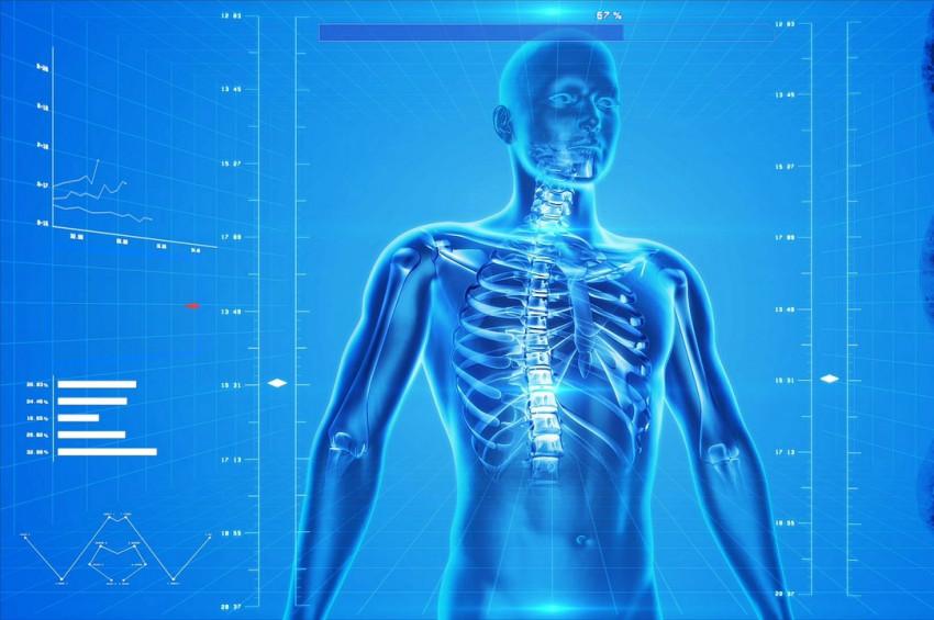 Prof. Dr. Yeşim Gökçe Kutsaldan Osteoporoz uyarıları