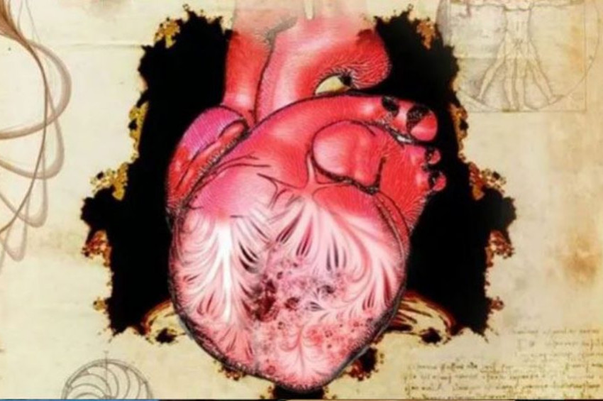 Da Vincinin çizdiği kalpteki sır çözüldü