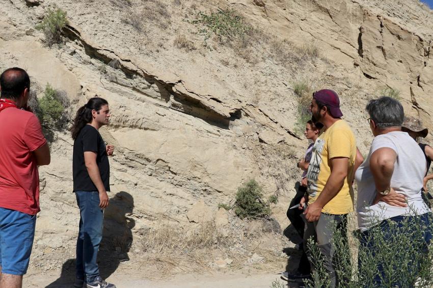 Denizlide 9 milyon yıllık karıncayiyen fosili bulundu