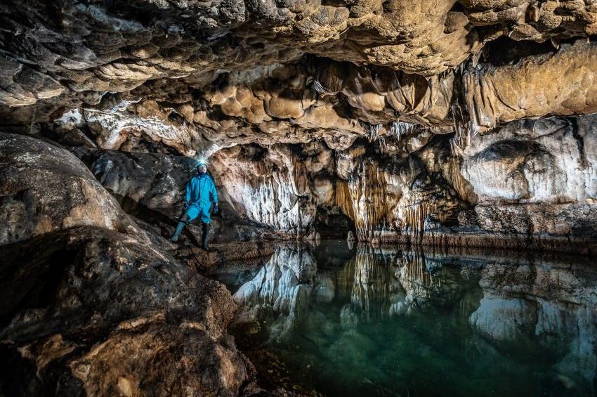 Türkiye Mağaralarında 24 memeli hayvan türüne rastlandı