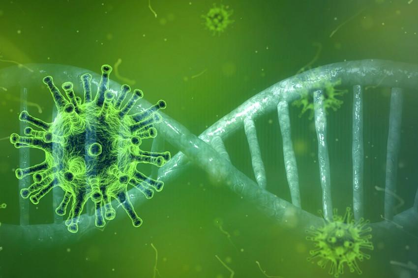 Koronavirüsün korkunç evrimi: Artık testte de görünmüyor