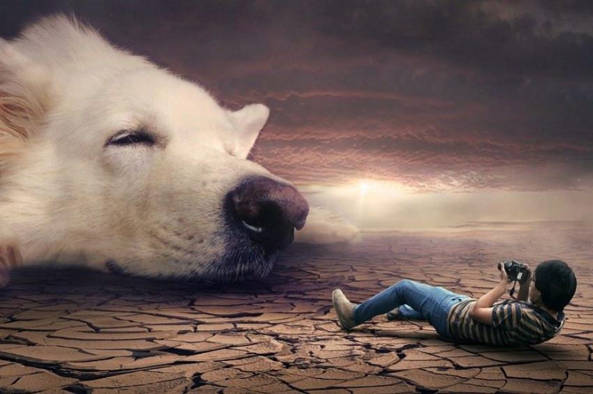 Rüya Yorumlarında çağın şartları göz önüne alınmalı