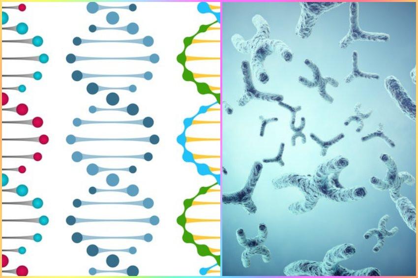 Yaşamı RNA yerine XNA da başlatmış olabilir