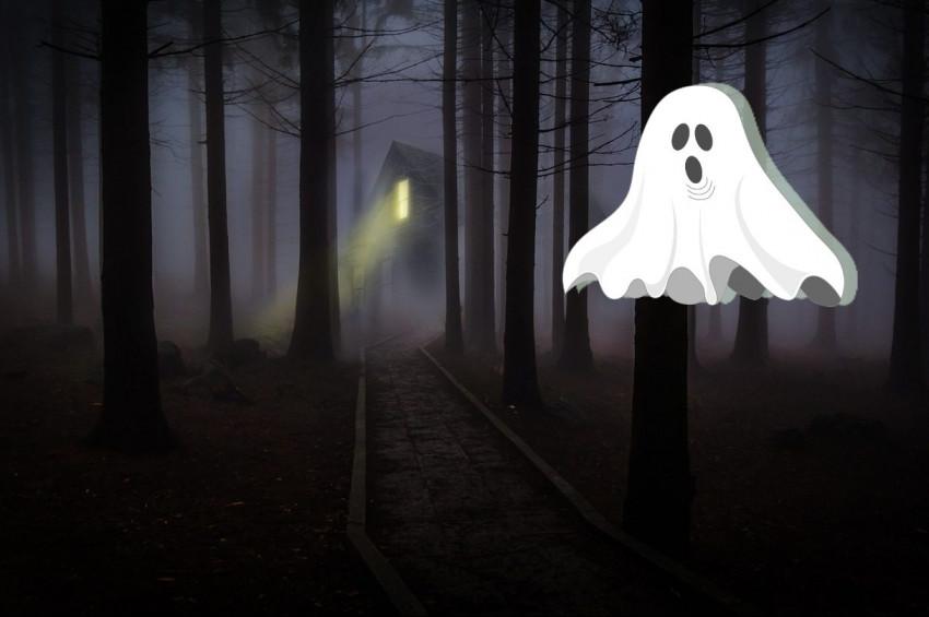 Hayalet nedir, kaç tür hayalet vardır?