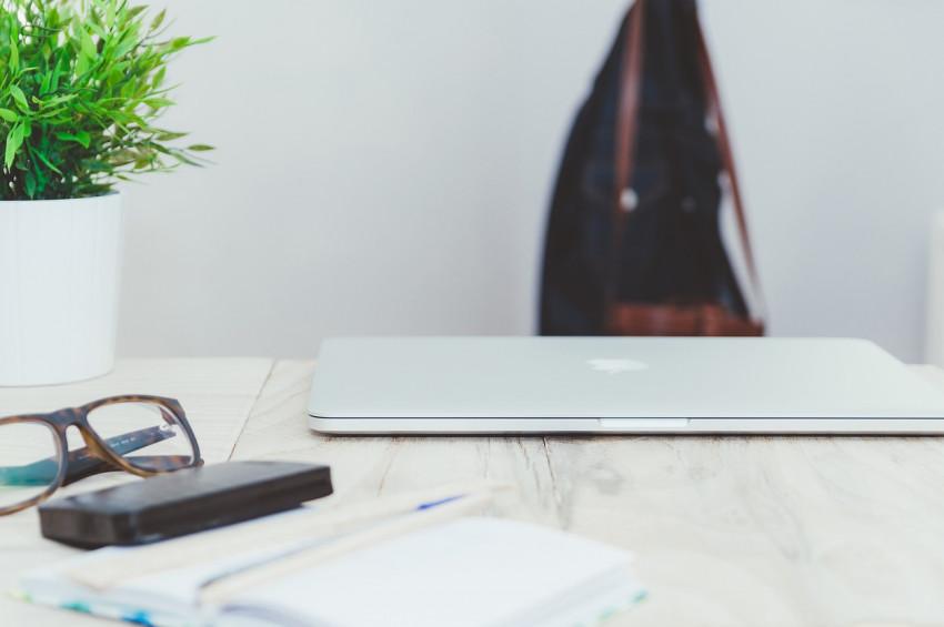 Ofis ve çalışma odalarında bitki bulundurmanın 5 faydası